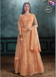 Light Ginger Mono Net Lehenga Choli